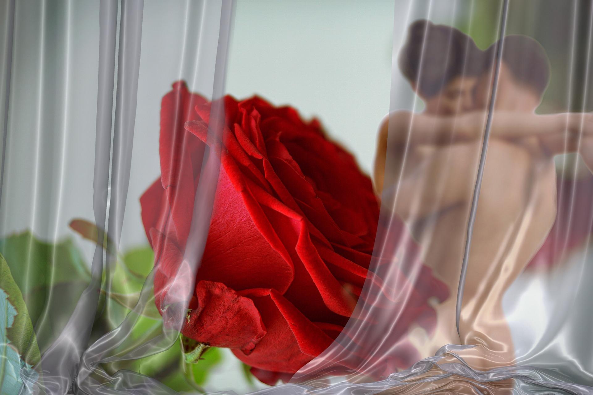 Menajera Se Ocupa Inainte De Toate De Descarcarea Sculei Aflate In Erectie | VK