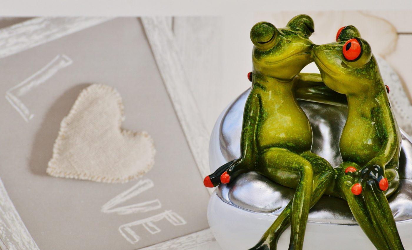 cum saruta in functie de zodie - sfatulparintilor.ro - pixabay_com - frogs-1280485_1920