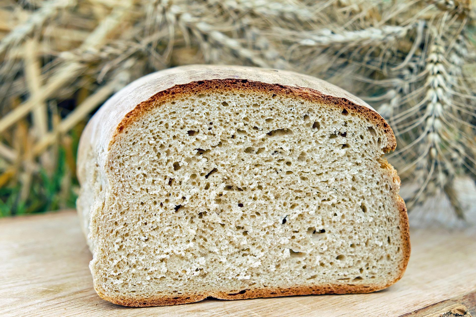 paine de casa cu lapte - sfatulparintilor.ro - pixabay_com - bread-1510155_1920