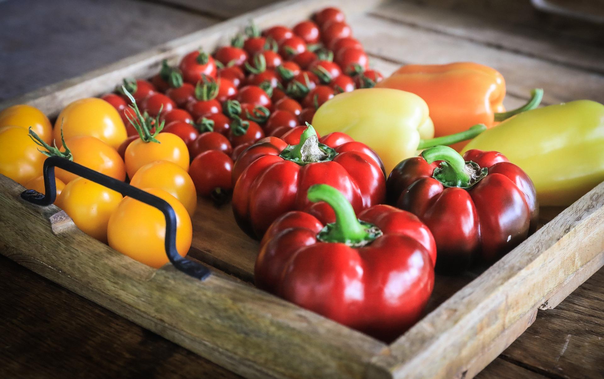 gogosari in sos - sfatulparintilor.ro - pixabay_com - vegetables-3606387_1920