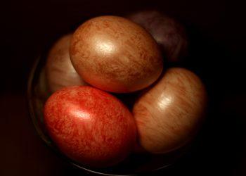 oua moderne - sfatulparintilor.ro - pixabay-com - eggs-5022775_1920