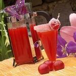 Nectar din corcoduse rosii