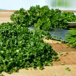 Reteta de detoxifiere: Salata de patrunjel