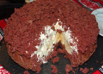 Tort Muşuroi de cârtiţă