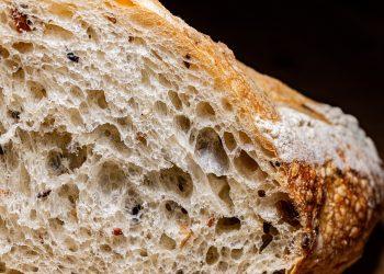 paine turceasca - sfatulparintilor.ro - pixabay-com - cesar-carlevarino-aragon-cjRacv4w13w-unsplash