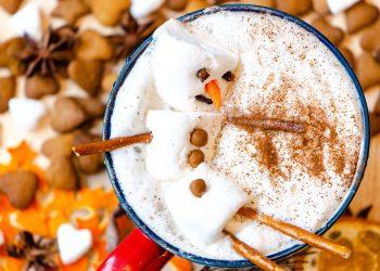 lapte de pasare - sfatulparinitlor.ro - pixabay_com - snowman-3898359_1920