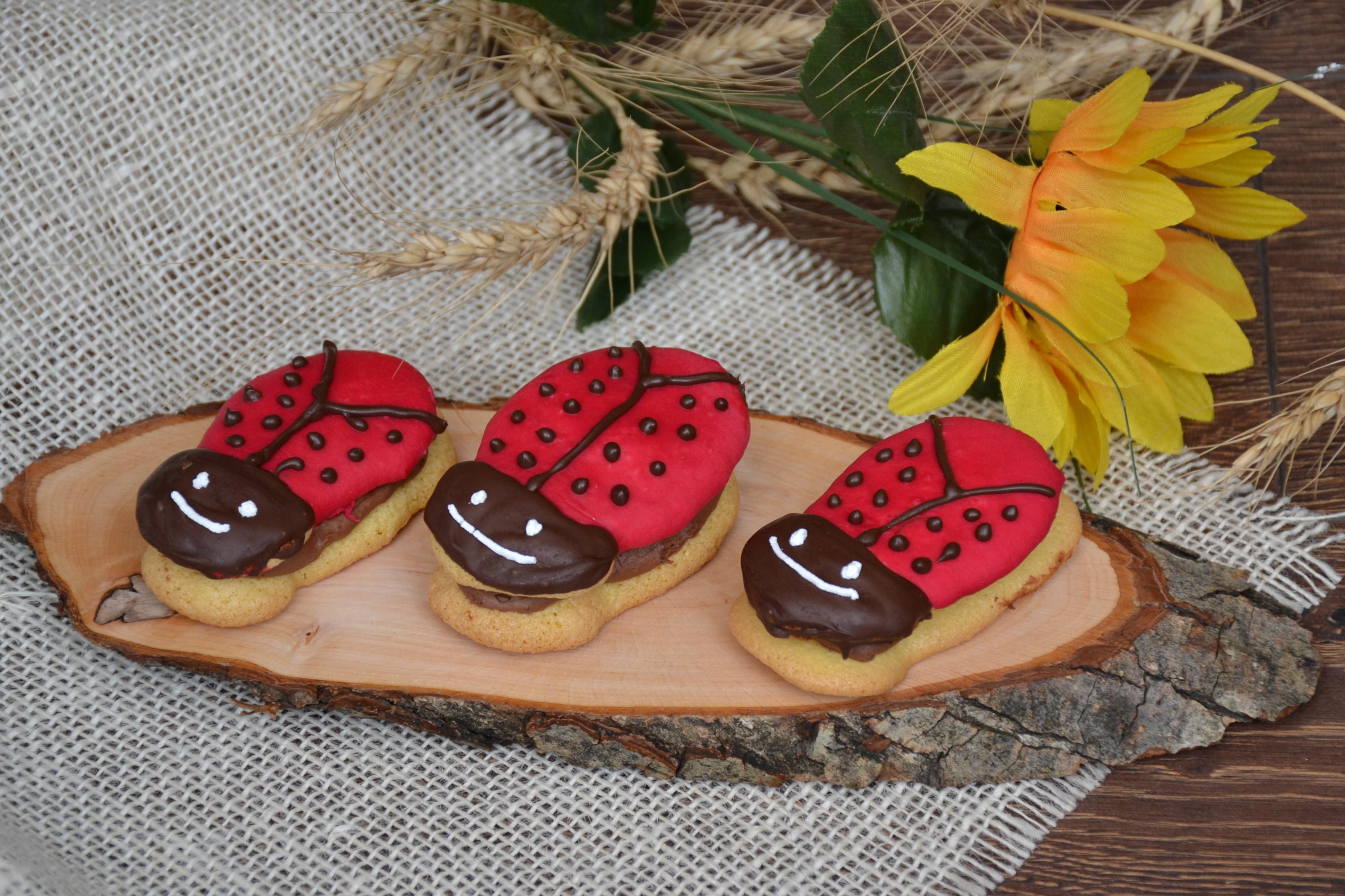 Prăjitura Buburuza