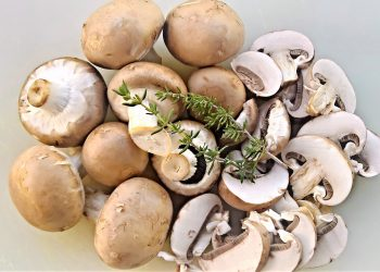 Ciulama de pui si ciuperci