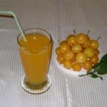 Nectar de corcoduse aurii