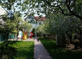 Die Biene Maja Kindergarten2