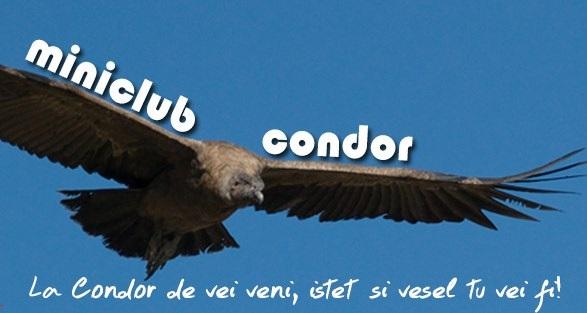 miniclub condor