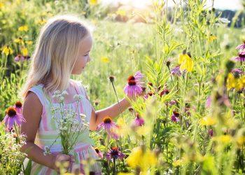 copil hiperactiv - sfatulparintilor.ro - pixabay-com - little-girl-2516578_1920