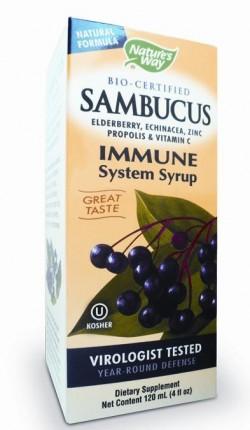 sfatulparintilor.ro - Sambucus_imunitate_secom