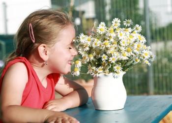 sfatulparintilor.ro - Alergiile de sezon