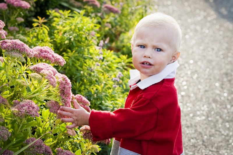 sfatulparintilor.ro - Lasa alergia copilului tau in grija noastra!
