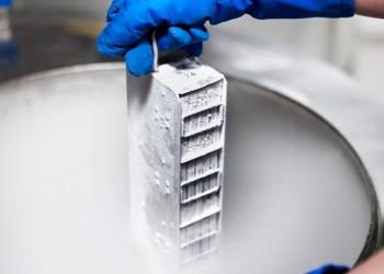 sfatulparintilor.ro - celule stem - stem sure
