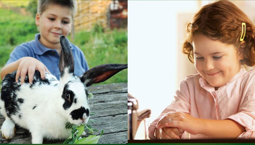 sfatulparintilor.ro-Misiune pentru sănătate la Ferma animalelor din Pantelimon