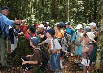 sfatulparintilor.ro - regulament tabere scolare - credit foto rtv.net
