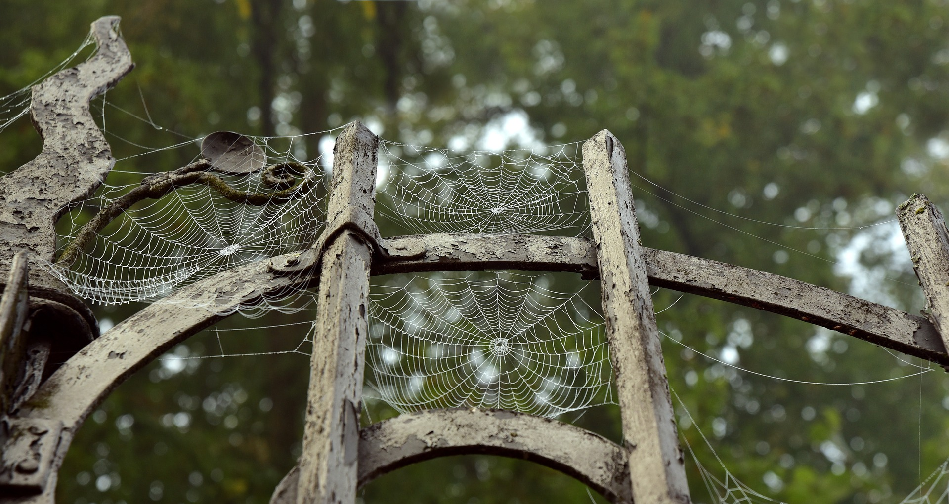 halloween-sfatulparintilor.ro - pixabay_com- 3726995_1920