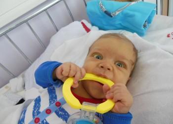 david - transplant ficat