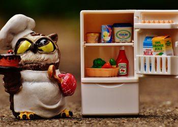 cum sa cureti frigiderul - sfatulparintilor.ro = pixabay-com - owl-1645310_1920