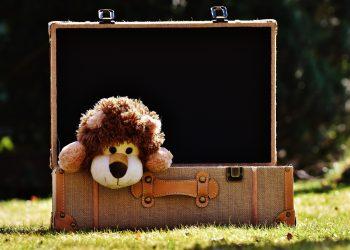 lucruri de luat pentru copii in bagaj - sfatulparintilor.ro - pixabay_com - teddy-bear-2149742_1920