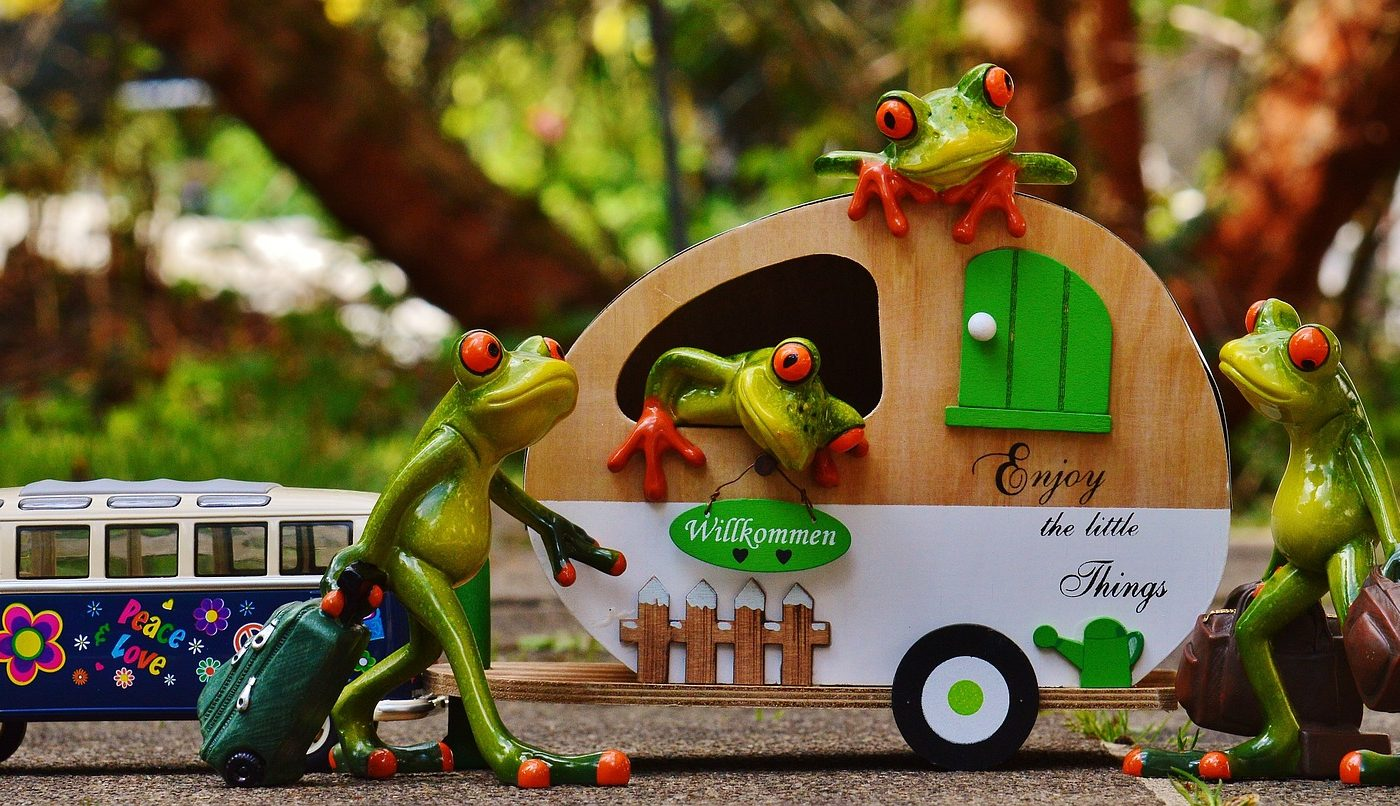 sa nu uiti bagaje - sfatulparintilor. ro - pixabay_com - frogs-1358815_1920