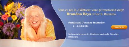 brandon bays - calatoria