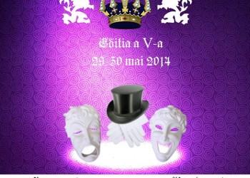 afis festival de teatru Ferdinand I