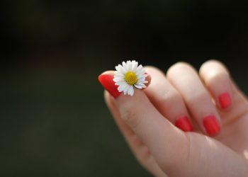 Ce alimente ajuta la cresterea mai rapida a unghiilor - sfatulparintilor.ro - pixabay_com - hand-302802_1920