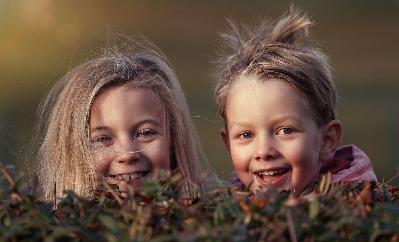 despre creierul copilului - sfatulparintilor.ro - pixabay_com - children-1879907_1920