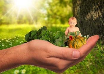 Cum iti inveti copilul sa iubeasca legumele