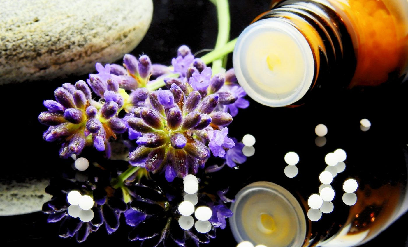 despre homeopatie - sfatulparintilor.ro - pexels_com - green-purple-flower-163186