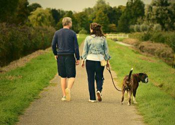 sa nu le spui cuplurilor fara copii - sfatulparintilor.ro - pixabay_com - man-3687274_1920