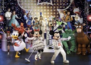 Disney Live! Mickey's Music Festival, Reguli de acces