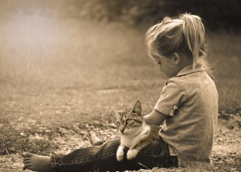 copii pisica - sfatulparintilor.ro - pixabay_com