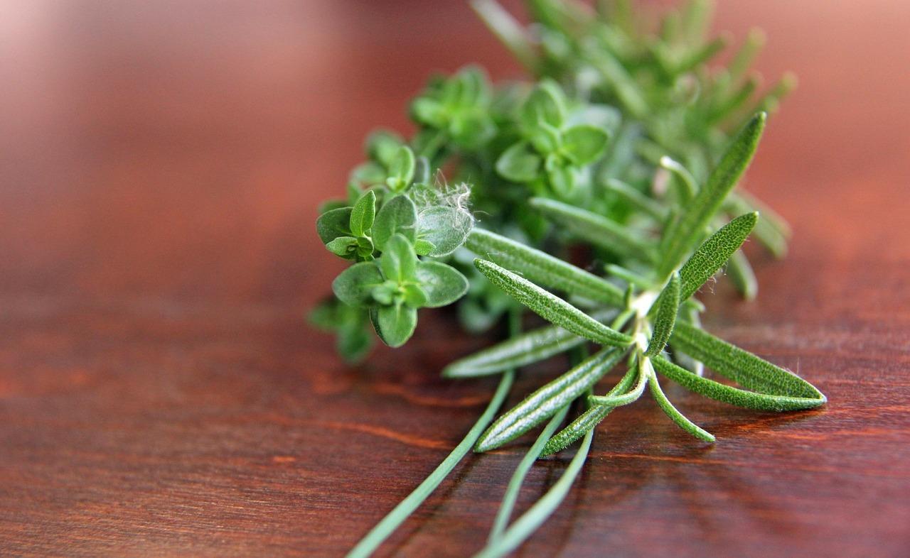 cimbru ierburi aromate - sfatulparintilor.ro - pixabay_com