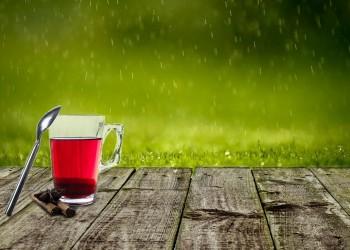 ceai rosu japonia - sfatulparintilor.ro - pixabay_com