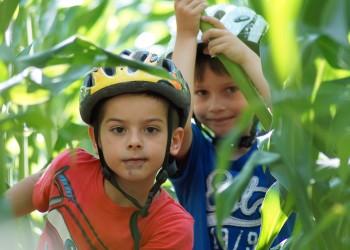 lucruri periculoase copii -sfatulparintilor.ro - pixabay_com