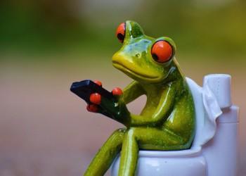 cum sa ai un scaun bun - scaun - constipatie - sfatulparintilor.ro - pixabay_com
