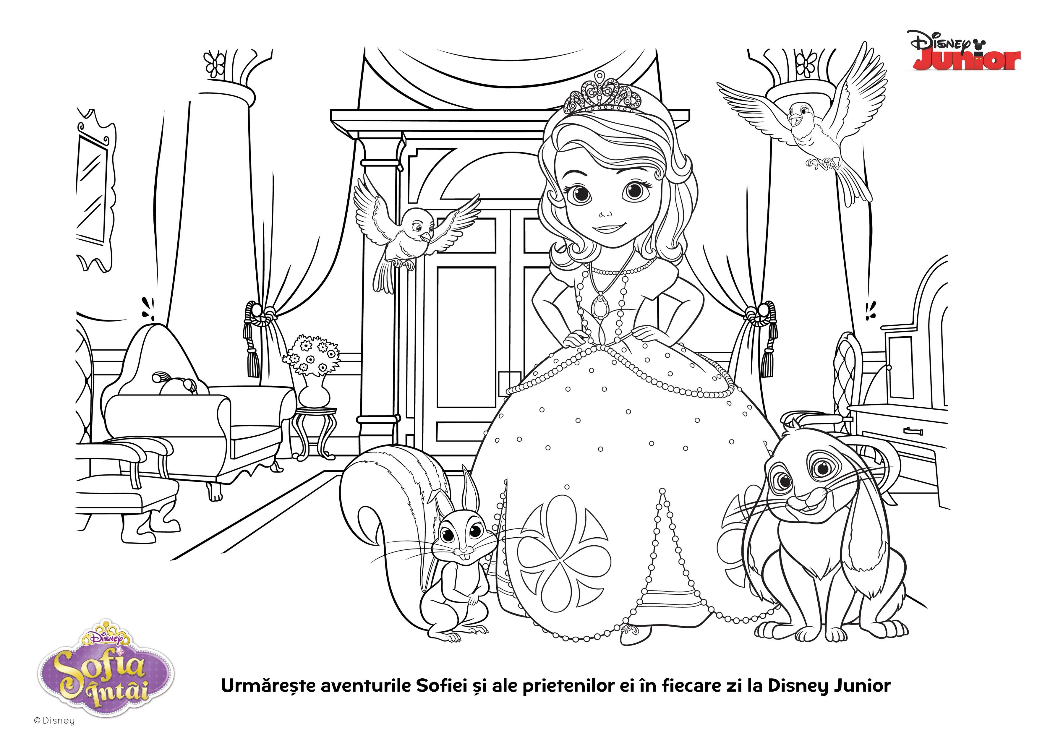 Planse De Colorat Pentru Copii Sofia I Si Prietenii Ei