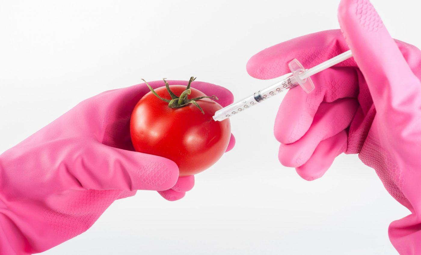 alimente laborator teste - sfatulparintilor.ro -pixabay_com