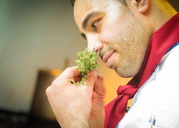 alimente miros - sfatulparintilor.ro- pixabay_com