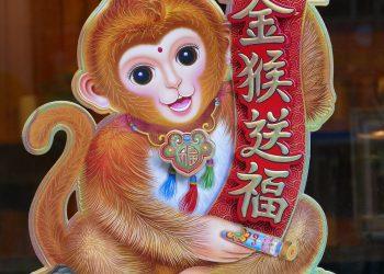 anul maimutei - sfatulparintilor.ro - pixabay_com - vietnam-1262814_1920