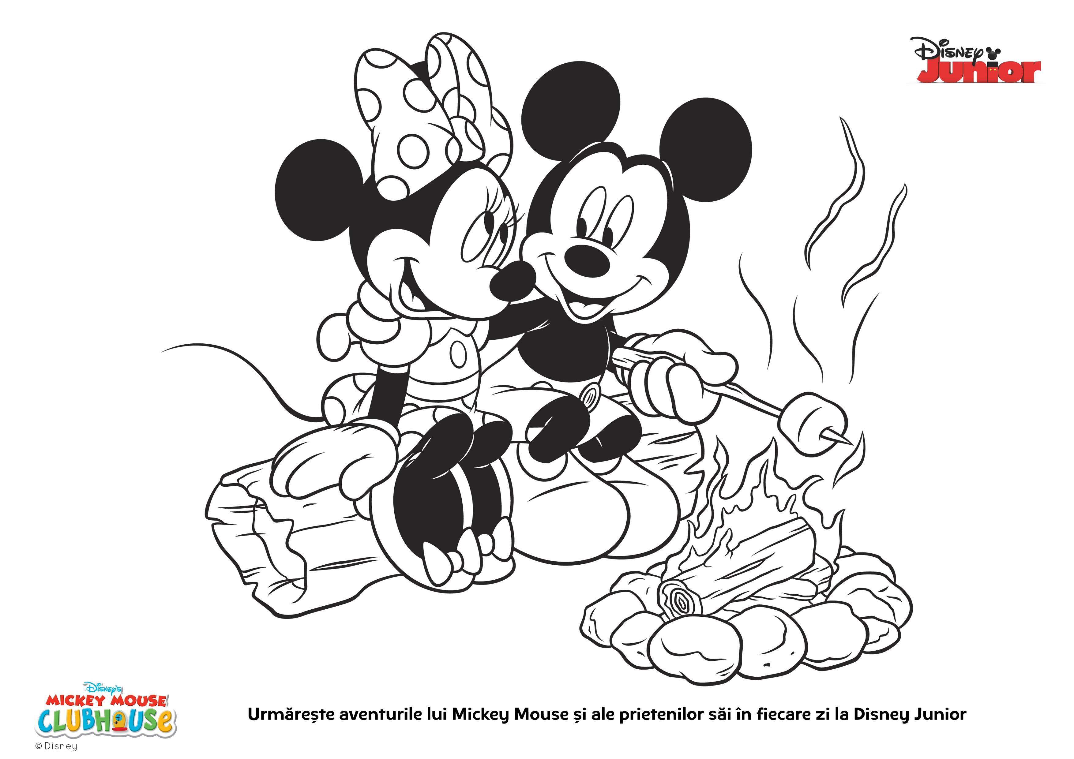 Planse De Colorat Pentru Copii Mickey Mouse Si Focul De