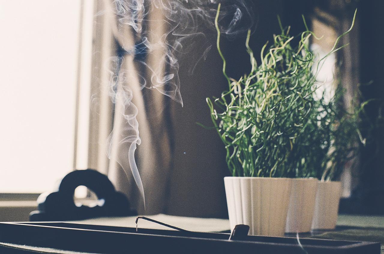 mirosuri bucatarie - sfatulparintilor.ro - pixabay_com