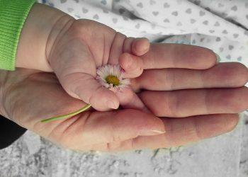 sa ii arati copilului tau ca il iubesti - sfatulparintilor.ro - pixabay_com - hands-105455_1920