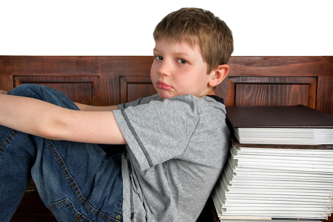 teme pentru acasa - scoala - lectii - sfatulparintilor.ro - pixabay_com