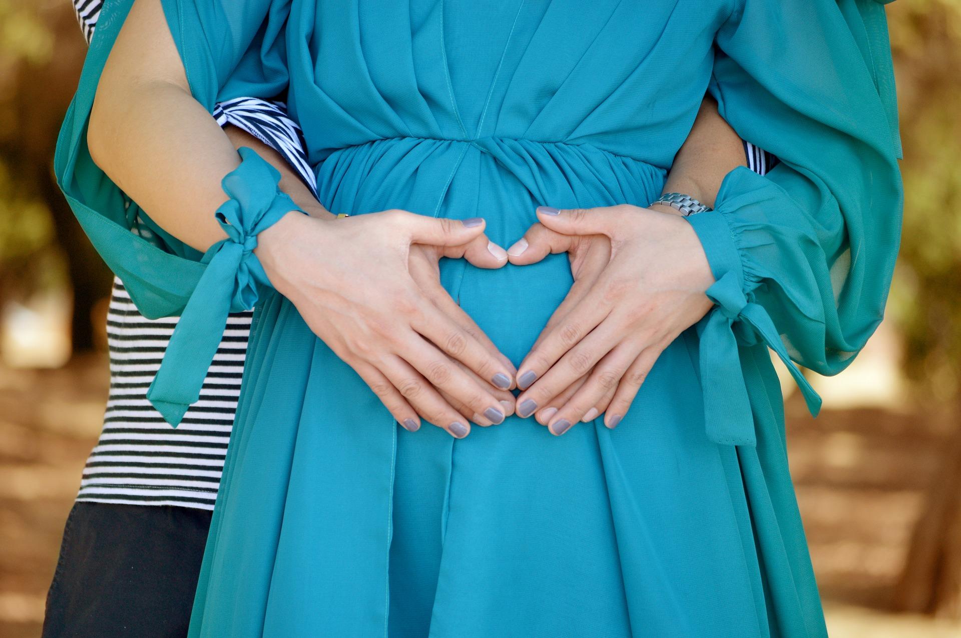 greturi gravida - sfatulparintilor.ro - pixabay_com - love-1828817_1920