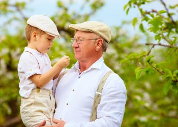 39690538 - cute grandpa with grandson on hands in spring garden